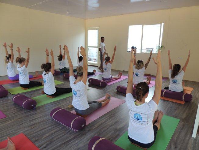 29 Days 300-Hour Hatha Yoga Teacher Training in India