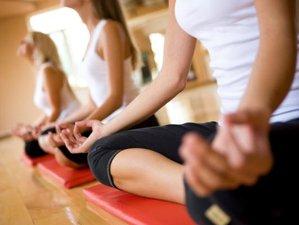 8 días retiro de yoga Ashtanga y Yin en Acquitaine, Francia
