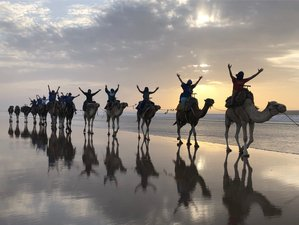 8 Days Women's Yoga and Culinary Retreat with Belly Dance in Essaouira, Morocco