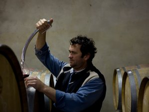 2 Day Cellar and Wine Tour in Western Cape, South Africa