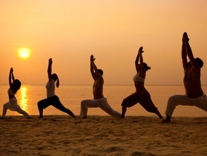 Powerful Awareness & Mindfulness Retreat - 7 Days of Pure Transformation Experience in Goa, India