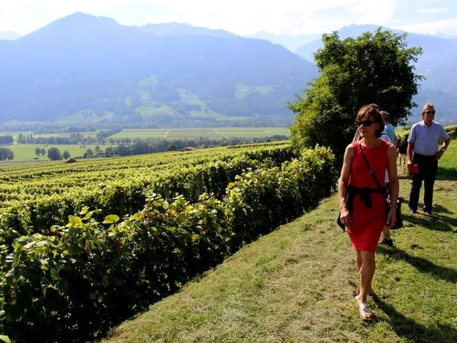 2 Days Swiss Alps Hiking and Wine Tour Switzerland