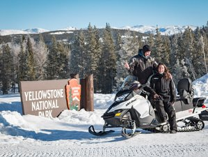 2 Days Snowmobile and Wildlife Tour in Yellowstone National Park, USA