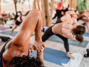 23 Day 200-Hour Recharge Your Energy Yoga Teacher Training in Počátky