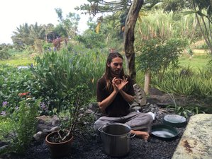 8 Days Ayurvedic Alchemy Cleanse, Yoga Practices, and Waterfall and Beach Journeys in Maui, Hawaii
