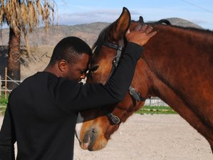 7 Day Personal Development and Body Awareness Horse Riding Holidays in Costa del Sol