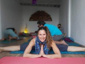 180 días de curso de formación de 200 horas como profesor de yoga en línea y a tu ritmo