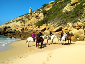 7 Day Yoga and Begginer Horse Riding Holiday in Tarifa, Cadiz