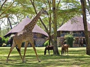 6 Days Magical Safaris in Kenya
