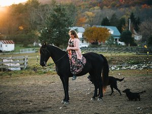 2 Day City Slicker Ranch Holiday Getaway in Spring Mills, Pennsylvania