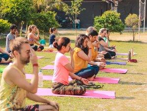 15 Day 100 Hours Vinyasa/ Hatha/ Ashtanga Based Yoga Teacher Training in Rishikesh