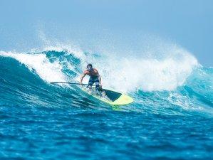8 Day Surf Camp in Vila Nova de Milfontes, Alentejo