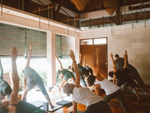 10 Day Life Changing Yoga Holiday With Bali Adventure and Cultural Immersion in Ubud