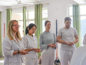 24 Days 200-Hour Therapeutic Holistic Yoga Teacher Training Course in Rishikesh, India