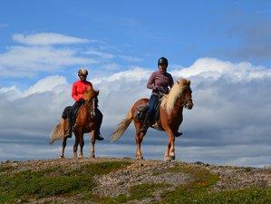 5 Days Biellugis Trail Horse Riding Holiday in Kiruna, Sweden