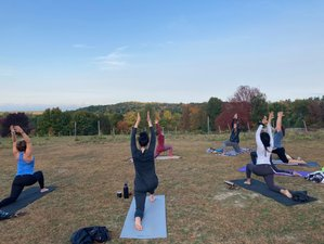 22 Day Growing and Blooming 300-Hour Yoga Teacher Training in New York