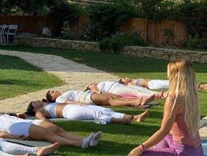 4-Week Livestream 200-Hour Vinyasa, Hatha & Restorative Online Yoga Teacher Training
