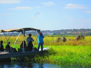 7 Days Mokoro Botswana Safari Tour