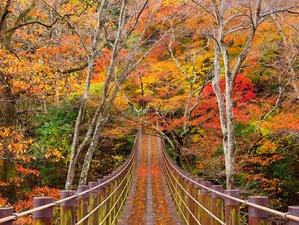 3 días retiro de yoga, meditación y senderismo de otoño en Kanto, Japón