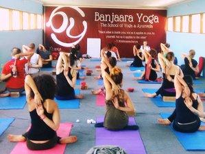 28 días, 200 horas profesorado de yoga y cuidado de la salud en Dharamsala, India