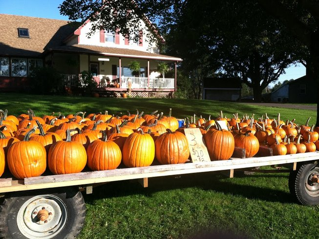 3 Days Pumpkin Cooking Vacations in USA