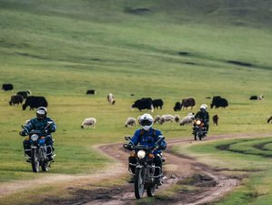 11 Day Mongolian Guided Off-road Motorcycle Tour in the Wild Steppe