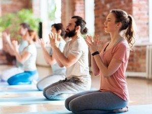 10 Day 100-Hour Online Pranayama and Meditation Yoga Teacher Training Course