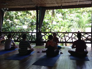 8 Days Solo Yoga Retreat in Philippines