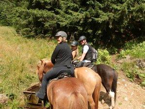 2 Days Mountain Tour Horse Riding Holiday in Harghita Bath, Romania