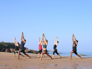 30 Day 200-Hour Online Hatha / Ashtanga Yoga Teacher Training Course