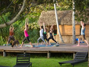 7 Days Surf, Pilates, and Yoga Retreat in Sri Lanka
