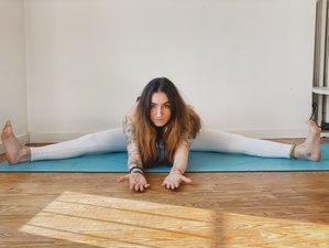 6 jours-50h en formation de professeur de yin yoga en ligne ouverte à tous