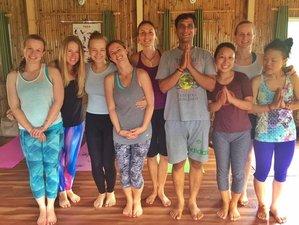24 Days 200 Hours Hatha & Ashtanga Vinyasa Yoga Teacher Training in Chiangmai, Thailand