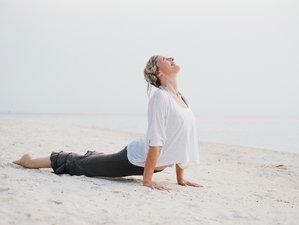 8 Days Science of Sadhana Yoga Retreat in Thailand