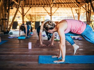 7 Day Chakra Activation Yoga Package On Island Paradise Gili Air, West Nusa Tenggara