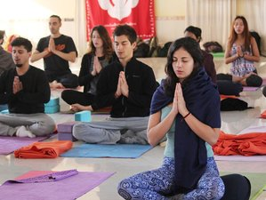 13 Day 100-Hour Hatha Yoga Teacher Training in Rishikesh