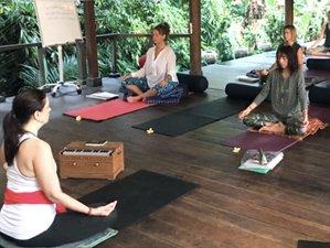 14 Days 100-Hour Ayurveda and Theurapetic Yoga Teacher Training in Ubud, Bali