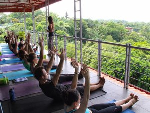 6 Day Sacred Plant Medicine + Yoga Retreat in Costa Rica