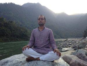 7 Days Beginner Meditation and Yoga Retreat in India