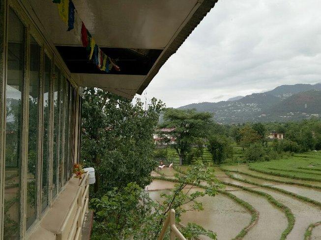 8 Days Detox, Meditation and Yoga Retreat in Himalaya, India