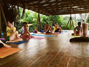7 Days Awaken to Bliss Meditation and Yoga Retreat in Bocas del Toro, Panama