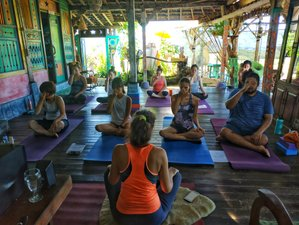 7 Day Learning Balinese Massage with Healing Workshop, Yoga, and Meditation in Lovina, Bali