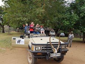 5 Days Big Five Safari in South Africa