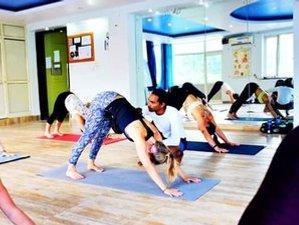 29 Day 300-Hour Raja Yoga Teacher Training Course in Rishikesh