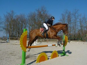 8 Days Show Jumping or Dressage Training with Trail Riding Holiday in Spoleto, Italy