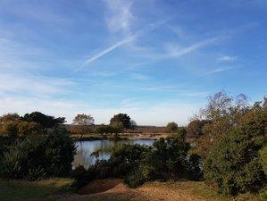 3 Days Lush Eco-Farm Stay Meditation and Yoga Retreat England, UK
