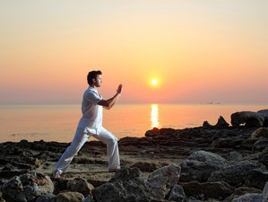 8 Days Beginners Tai Chi and Qigong Wellness Holiday for Private Couples/Friends in Messinia, Greece