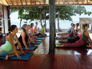 13 Days Premium Detox and Yoga Retreat in Surat Thani, Thailand