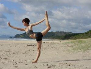 28 Days 200-Hour Yoga Teacher Training in New Zealand