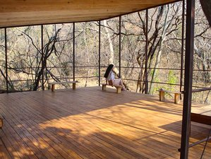 3 Days Nurturance - A Short Yoga Retreat in Magaliesburg, South Africa